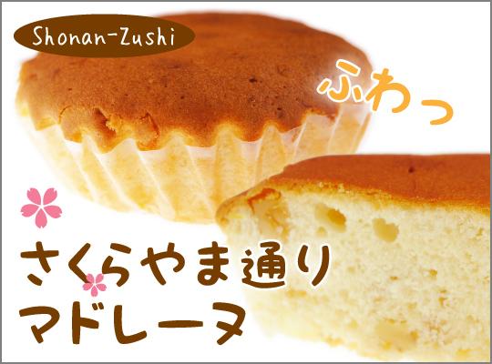 20161102sakura2_2